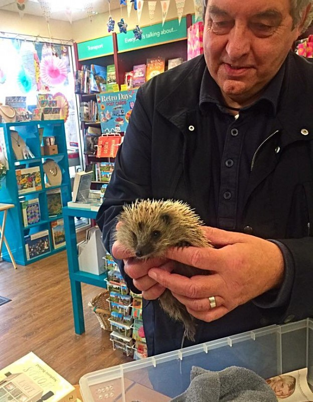 Sophie Hedgehog with rescue worker Brian, she popped by to say thank you on her way to release.